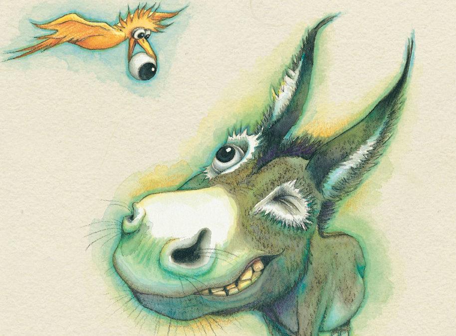 Designing Wonky Donkey